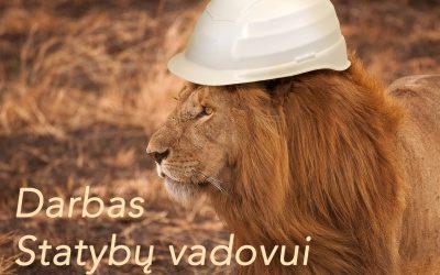 STATYBOS VADOVAS